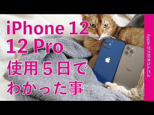 11 Proからは買い替えメリット少!iPhone 12と12 Proを使用5日間で試した事わかった事・MagSafeフル充電やバッテリー持続時間、楽天eSIMに写真の比較などレビュー第二弾